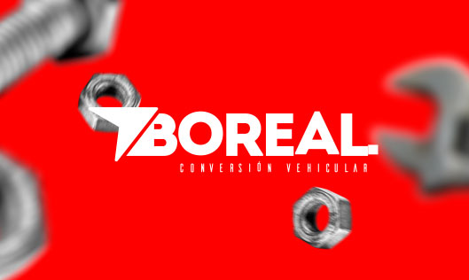 web development project boreal